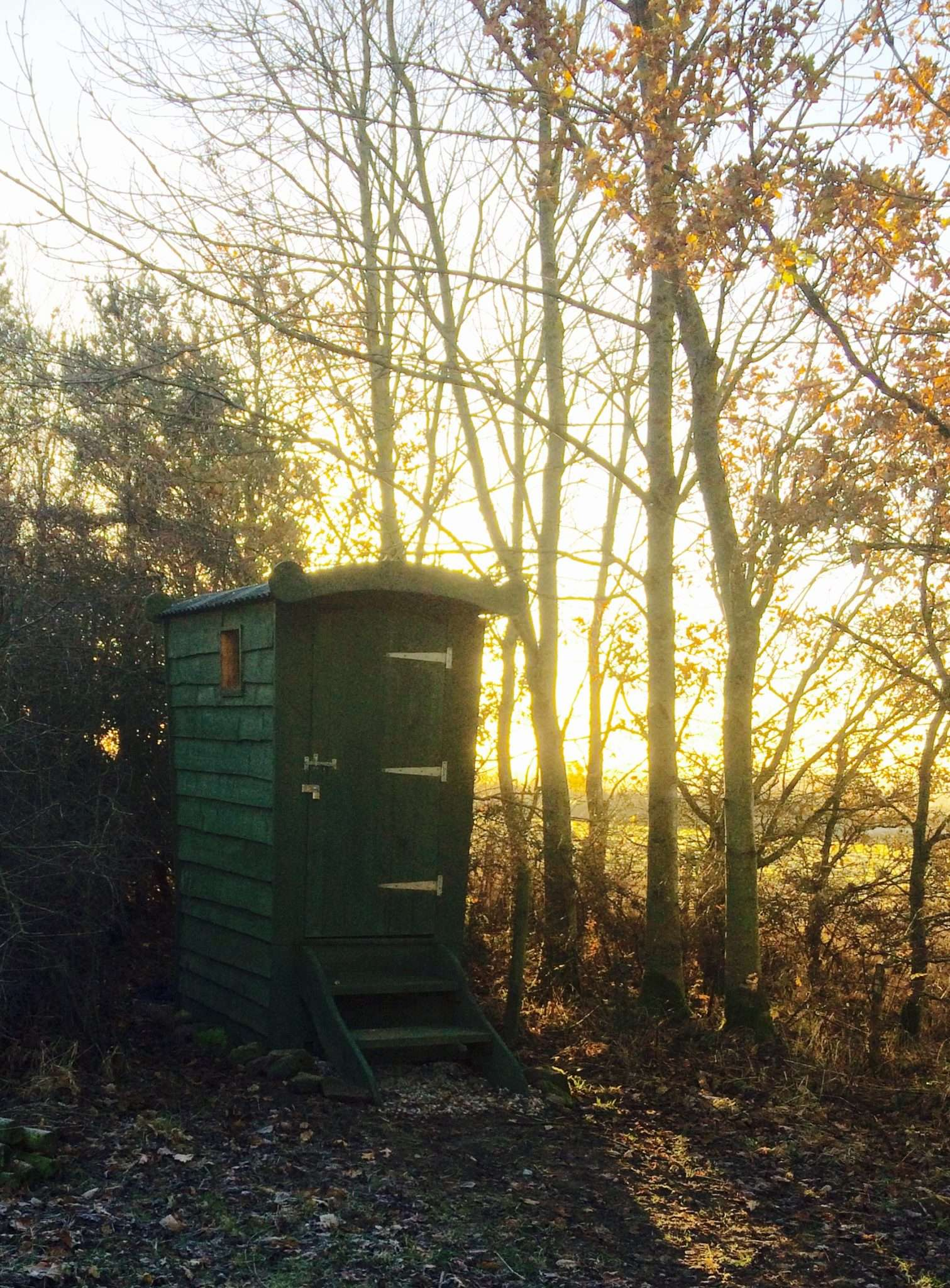 Website toilet - Birkheads Wild