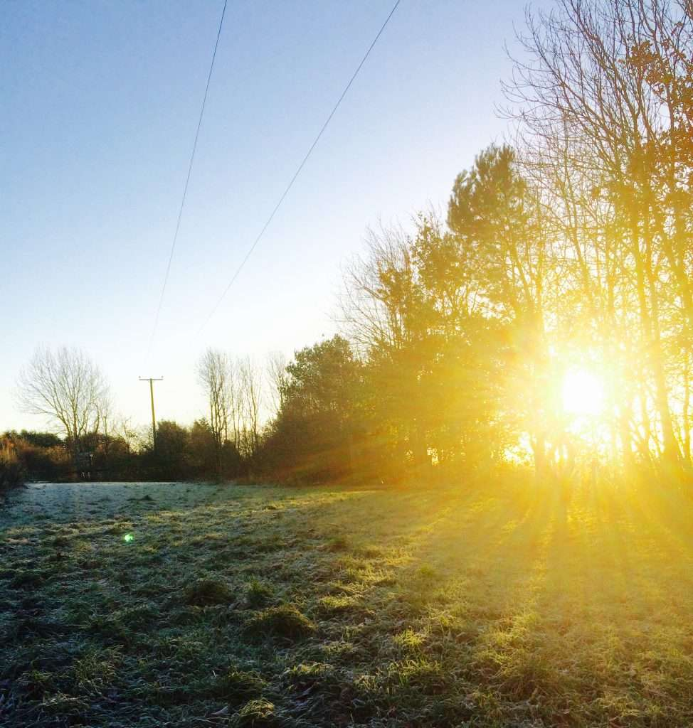 winter sunrise on site