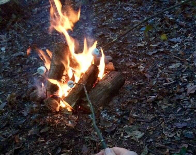 toasting marshmallows - a rite of passage